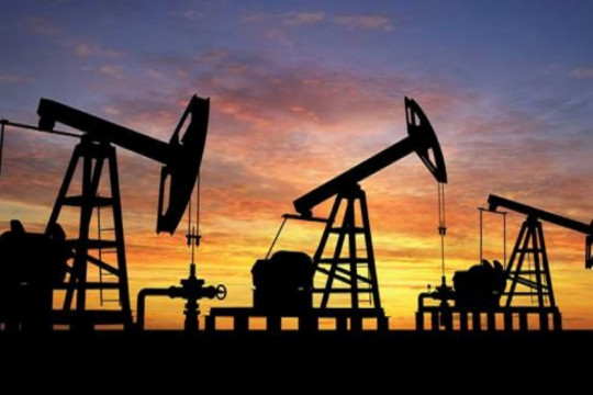الإمارات تحذر من صدمات في قطاع الطاقة إذا استمرت أسعار النفط بالانخفاض