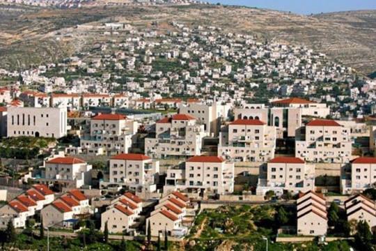 تحركات دبلوماسية فلسطينية لمواجهة خطة ضم الأغوار وجزءًا من الضفة الغربية
