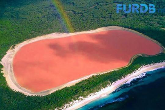 بُحيرة لونار الهندية يتحول لونها للزهري