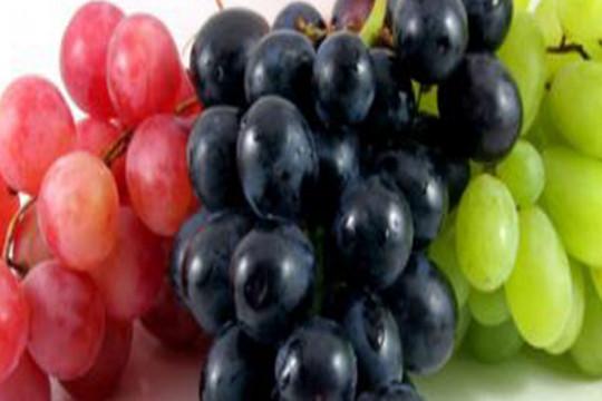 أبرز فوائد العنب