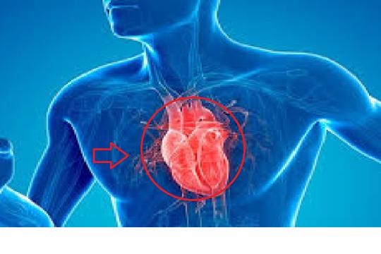 إعتلال عضلة القلب خلال أزمة كورونا - فيديو