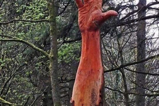 كف منحوتة على بقايا شجرة في بريطانيا - صور